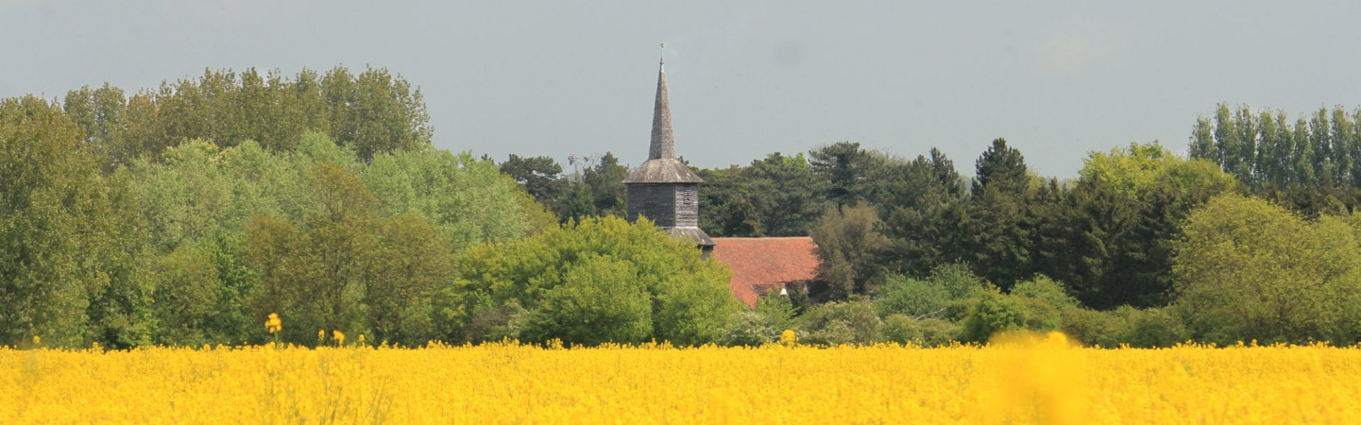A summer view across open farm land towards the bell tower of St Laurence church.